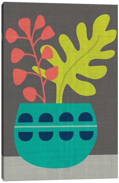 Clay Pot IV Canvas Art Print