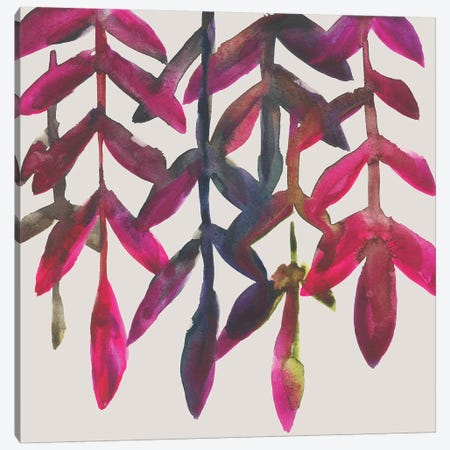 Fuchsia Vine I Canvas Print #ZAR496} by Chariklia Zarris Canvas Art