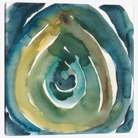 Peacock Reflection II Canvas Print #ZAR507} by Chariklia Zarris Canvas Wall Art