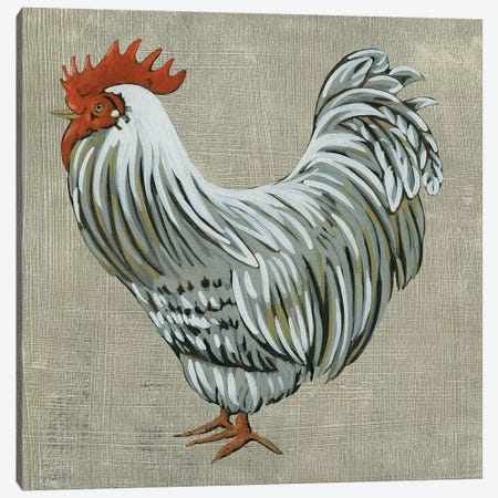 Roost II 3-Piece Canvas #ZAR509} by Chariklia Zarris Canvas Print