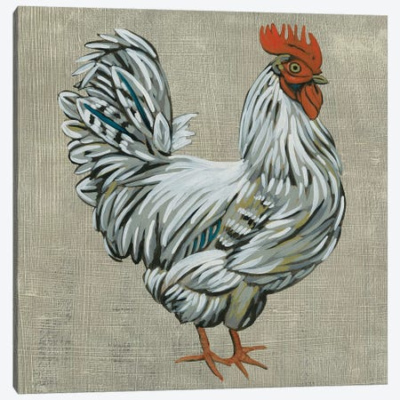 Roost III Canvas Print #ZAR510} by Chariklia Zarris Canvas Art