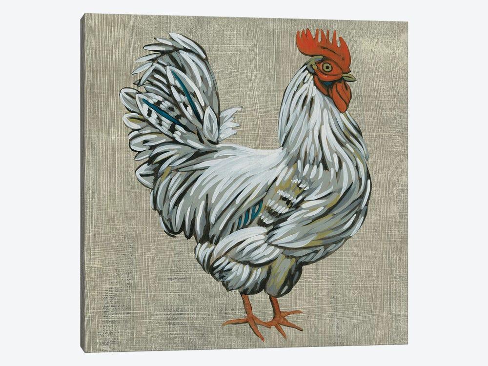 Roost III by Chariklia Zarris 1-piece Canvas Print