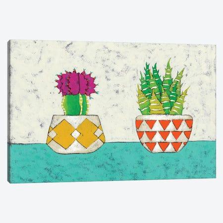 Succulent Duo II Canvas Print #ZAR56} by Chariklia Zarris Art Print