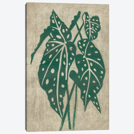 Vintage Greenery II Canvas Print #ZAR588} by Chariklia Zarris Canvas Art Print