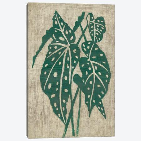 Vintage Greenery II Canvas Print #ZAR588} by Chariklia Zarris Canvas Art Print