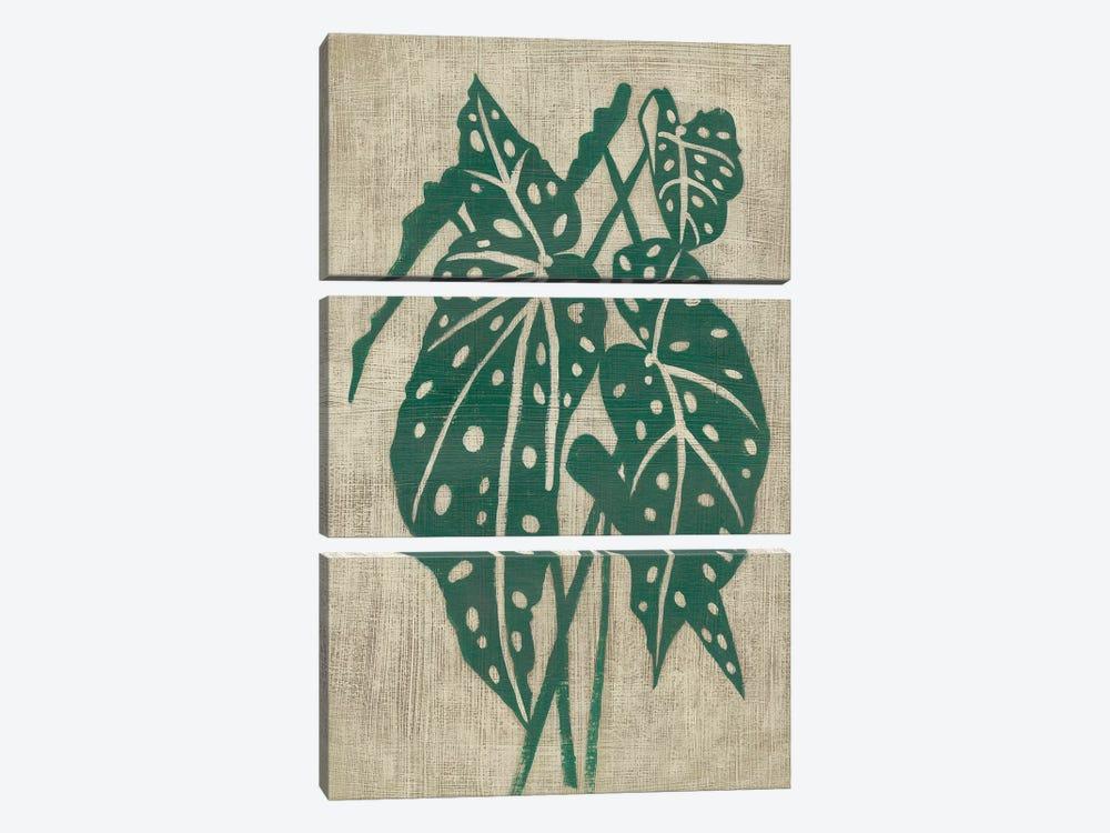 Vintage Greenery II by Chariklia Zarris 3-piece Canvas Wall Art