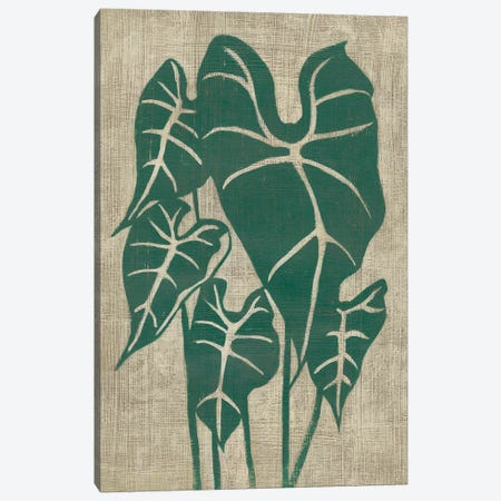 Vintage Greenery III Canvas Print #ZAR589} by Chariklia Zarris Canvas Art Print