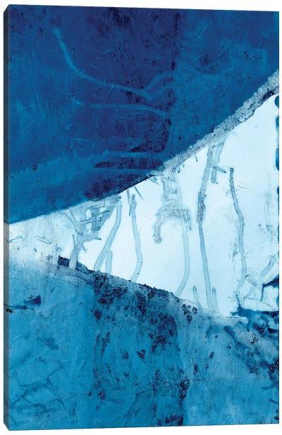 Undercurrent II Canvas Art Print