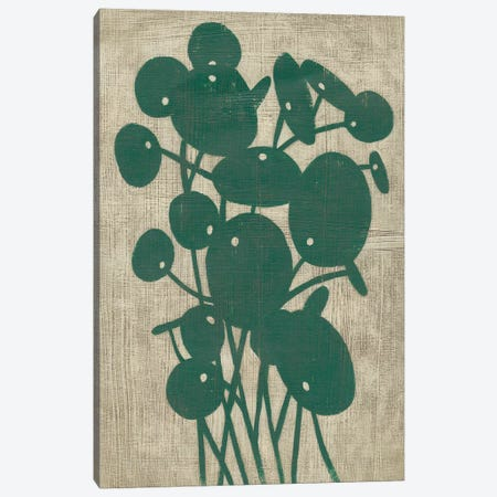 Vintage Greenery IV Canvas Print #ZAR590} by Chariklia Zarris Canvas Wall Art