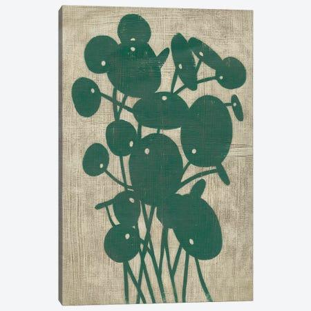 Vintage Greenery IV Canvas Print #ZAR590} by Chariklia Zarris Canvas Wall Art