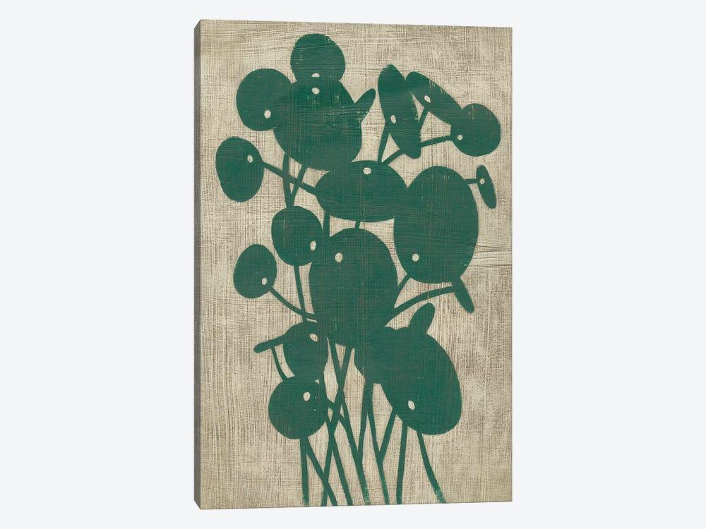 Vintage Greenery IV by Chariklia Zarris 1-piece Canvas Print
