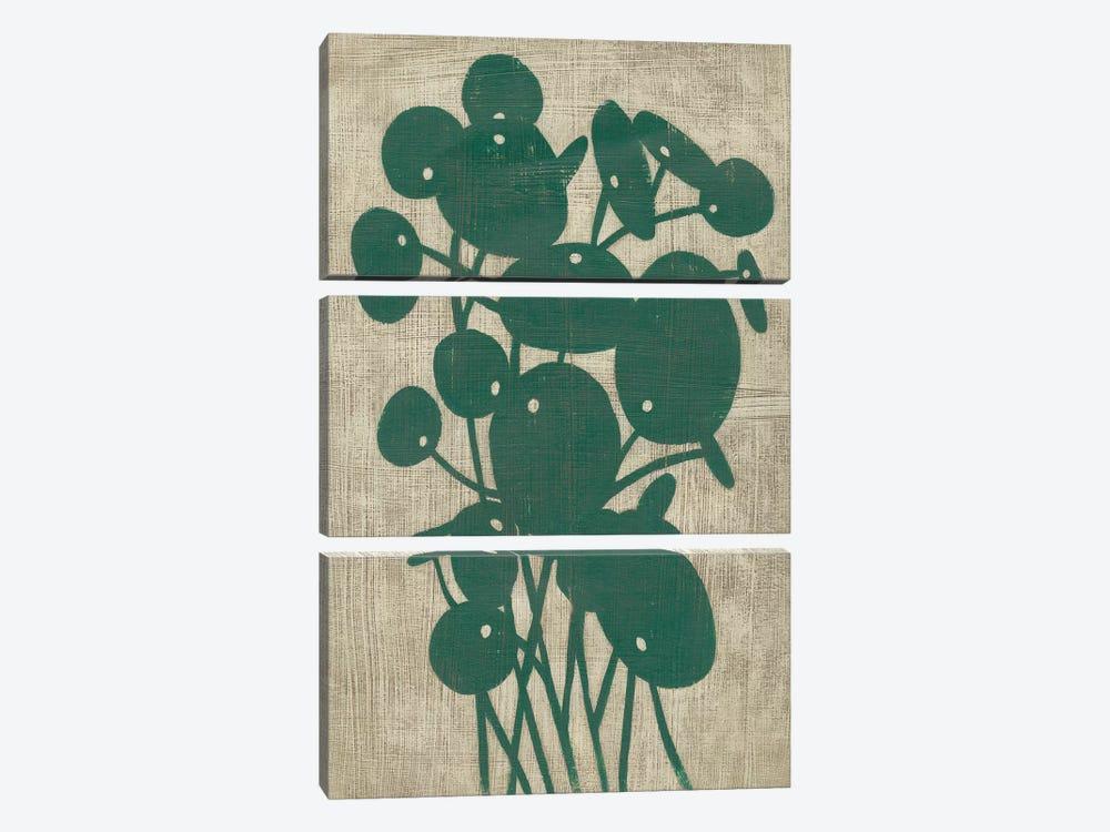 Vintage Greenery IV by Chariklia Zarris 3-piece Canvas Print