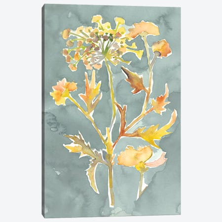 Collected Florals I Canvas Print #ZAR601} by Chariklia Zarris Canvas Artwork