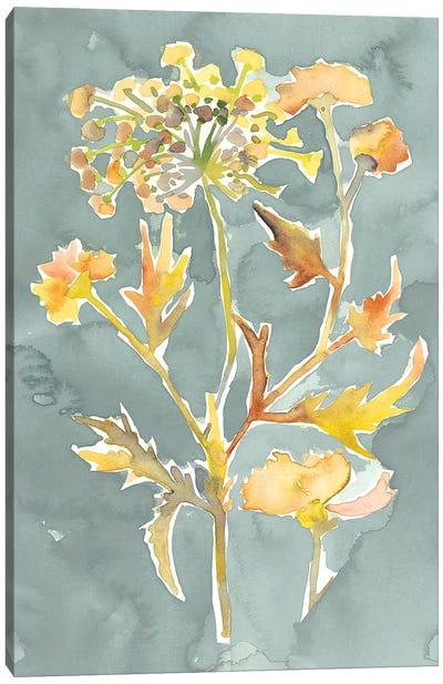 Collected Florals I Canvas Art Print