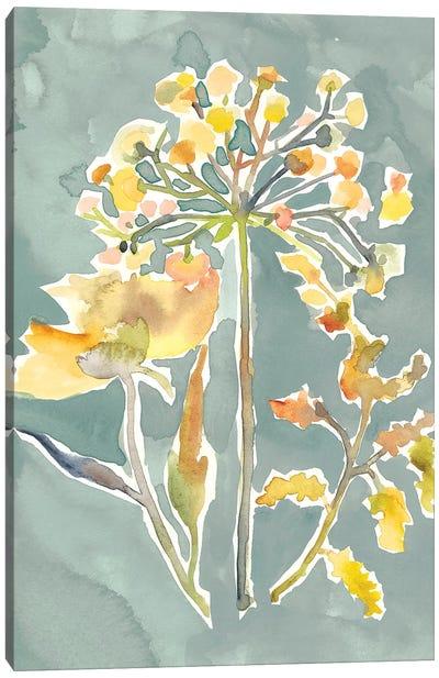 Collected Florals II Canvas Art Print
