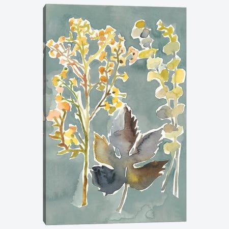 Collected Florals III 3-Piece Canvas #ZAR603} by Chariklia Zarris Canvas Artwork