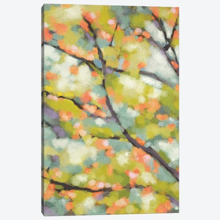 Dappled Dusk I Canvas Print #ZAR605} by Chariklia Zarris Canvas Print