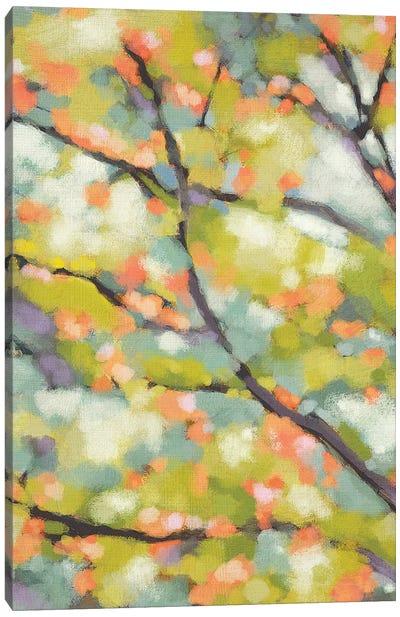 Dappled Dusk I Canvas Art Print