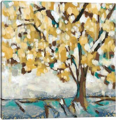 Golden Sunrise II Canvas Art Print