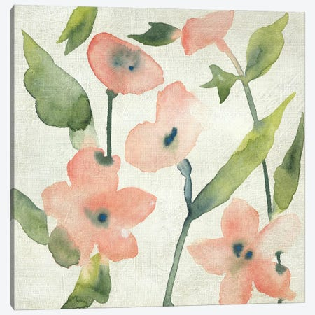 Blush Pink Blooms I Canvas Print #ZAR676} by Chariklia Zarris Canvas Art