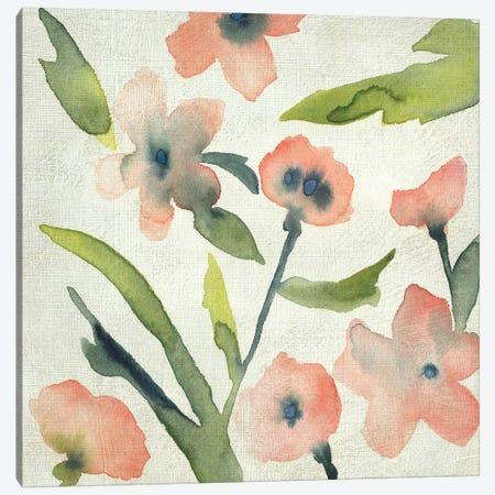 Blush Pink Blooms II Canvas Print #ZAR677} by Chariklia Zarris Canvas Art