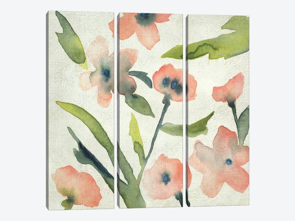 Blush Pink Blooms II by Chariklia Zarris 3-piece Canvas Artwork
