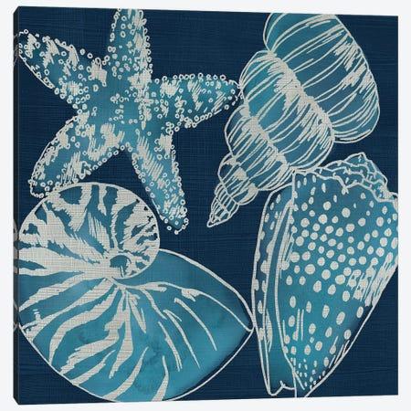 Marine Shells I Canvas Print #ZAR714} by Chariklia Zarris Canvas Print