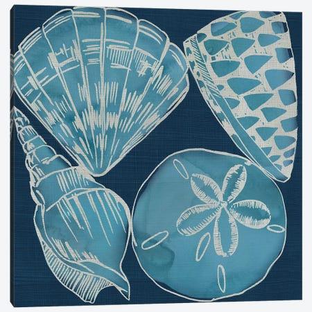 Marine Shells IV Canvas Print #ZAR717} by Chariklia Zarris Canvas Art Print