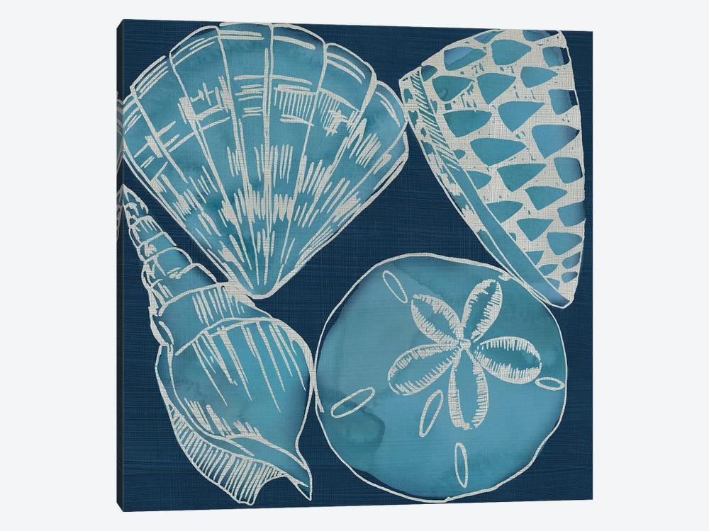 Marine Shells IV by Chariklia Zarris 1-piece Canvas Art Print