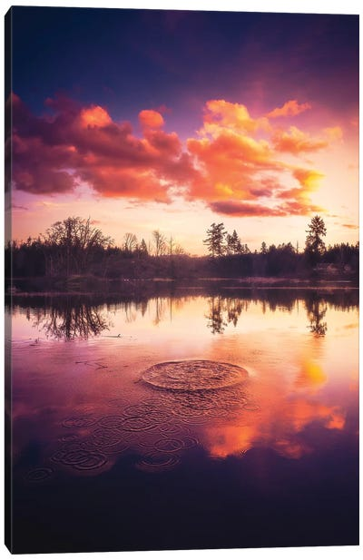 Ripples Canvas Art Print