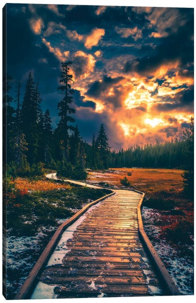 Moody Alpine Skies Canvas Art Print
