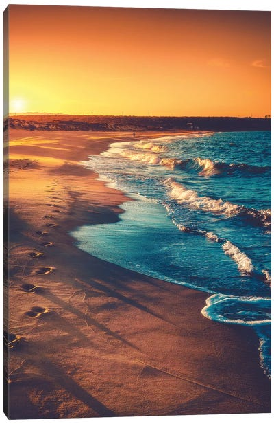 Walks Along The Shoreline Canvas Art Print