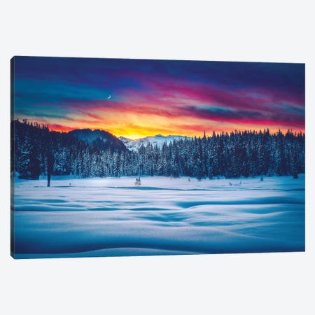 Winter Wonderland Canvas Print #ZDO32} by Zach Doehler Art Print