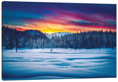 Winter Wonderland Canvas Art Print