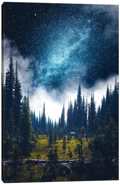 Alpine Dreamland Canvas Art Print