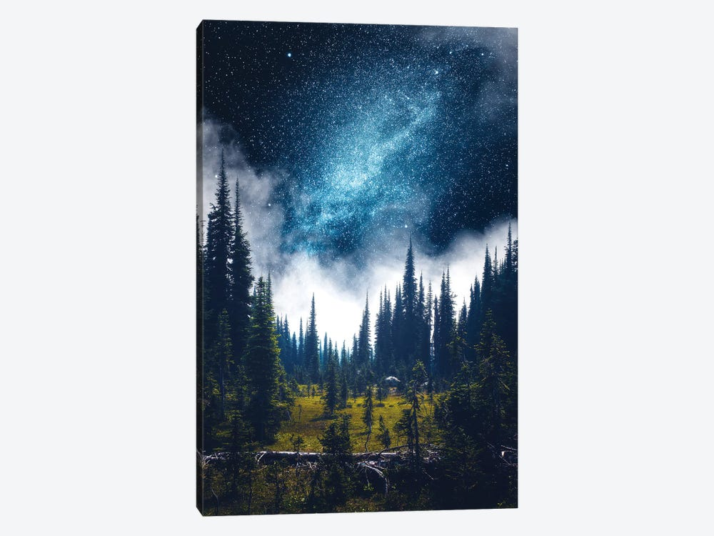 Alpine Dreamland by Zach Doehler 1-piece Canvas Wall Art