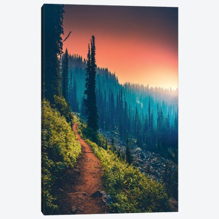 Colour Spectrum Canvas Print #ZDO40} by Zach Doehler Canvas Wall Art