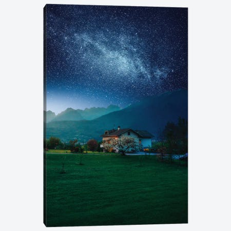Countryside Cosmos Canvas Print #ZDO42} by Zach Doehler Canvas Artwork
