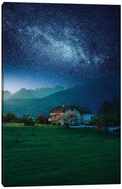 Countryside Cosmos Canvas Art Print