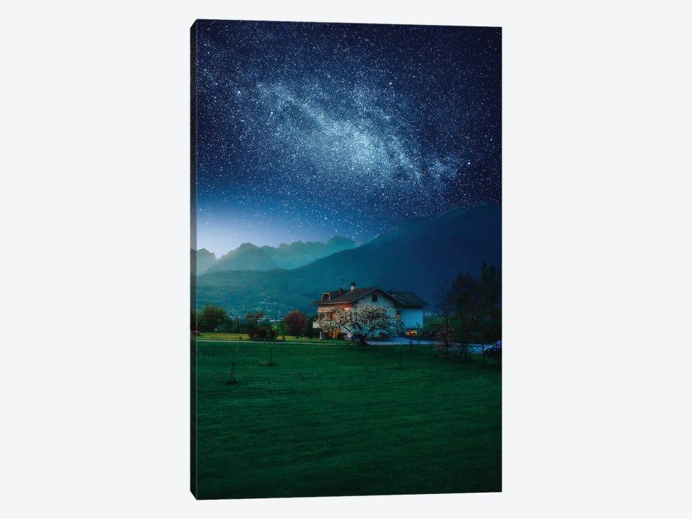 Countryside Cosmos by Zach Doehler 1-piece Canvas Artwork