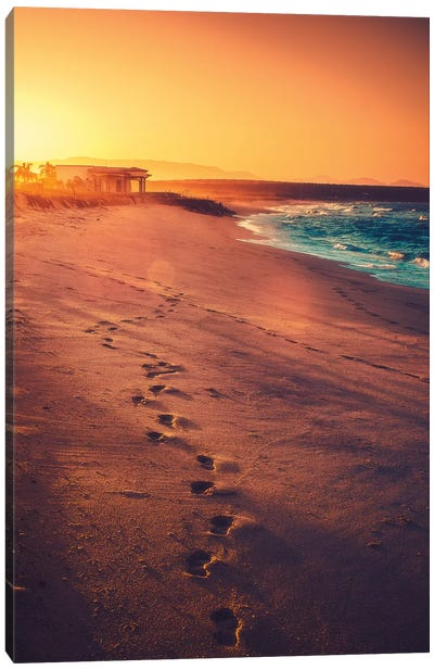 Footsteps Canvas Art Print