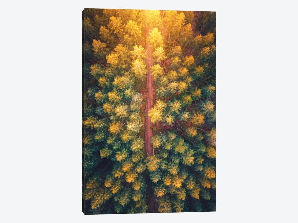 Hidden Pathways by Zach Doehler 1-piece Canvas Print