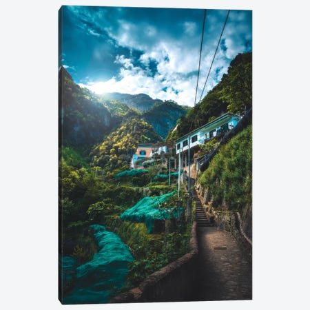 Into The Jungle Canvas Print #ZDO62} by Zach Doehler Canvas Wall Art