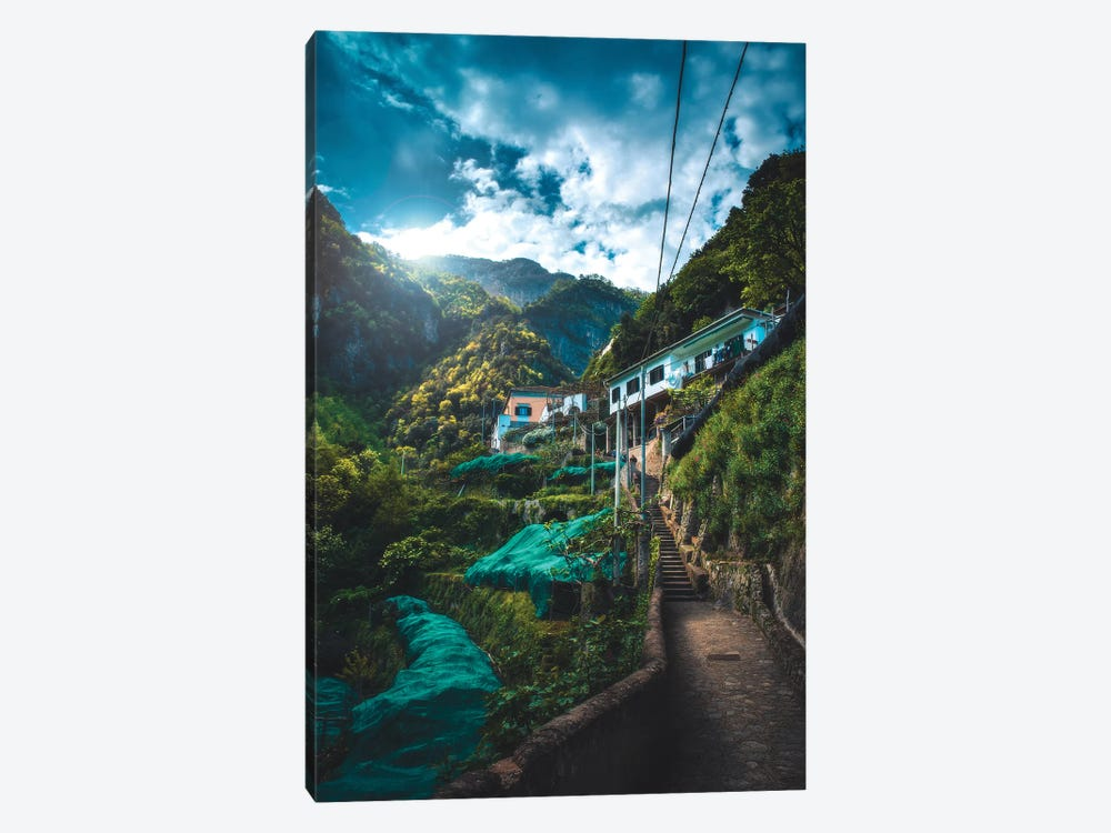 Into The Jungle by Zach Doehler 1-piece Canvas Wall Art