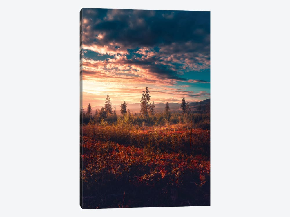 Ablaze by Zach Doehler 1-piece Canvas Art