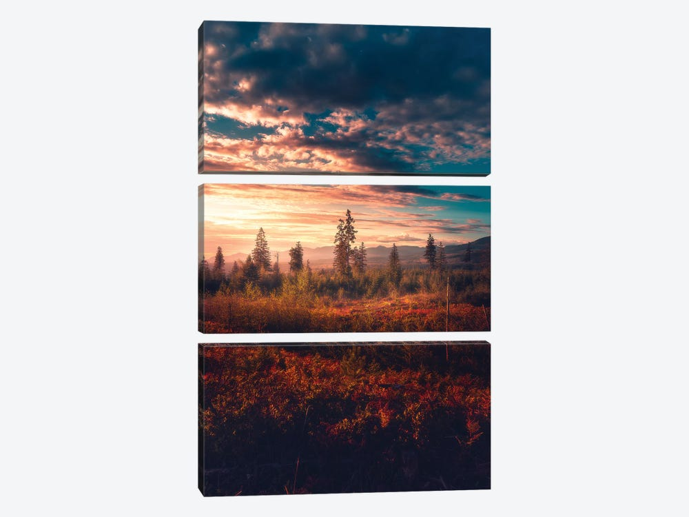 Ablaze by Zach Doehler 3-piece Canvas Wall Art