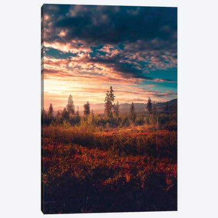 Ablaze Canvas Print #ZDO66} by Zach Doehler Canvas Art Print