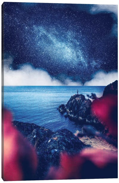 Night Visions Canvas Art Print