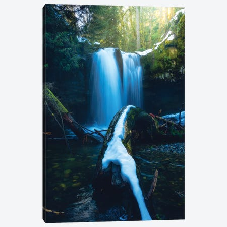 Finding Peace In The Chaos Canvas Print #ZDO70} by Zach Doehler Art Print