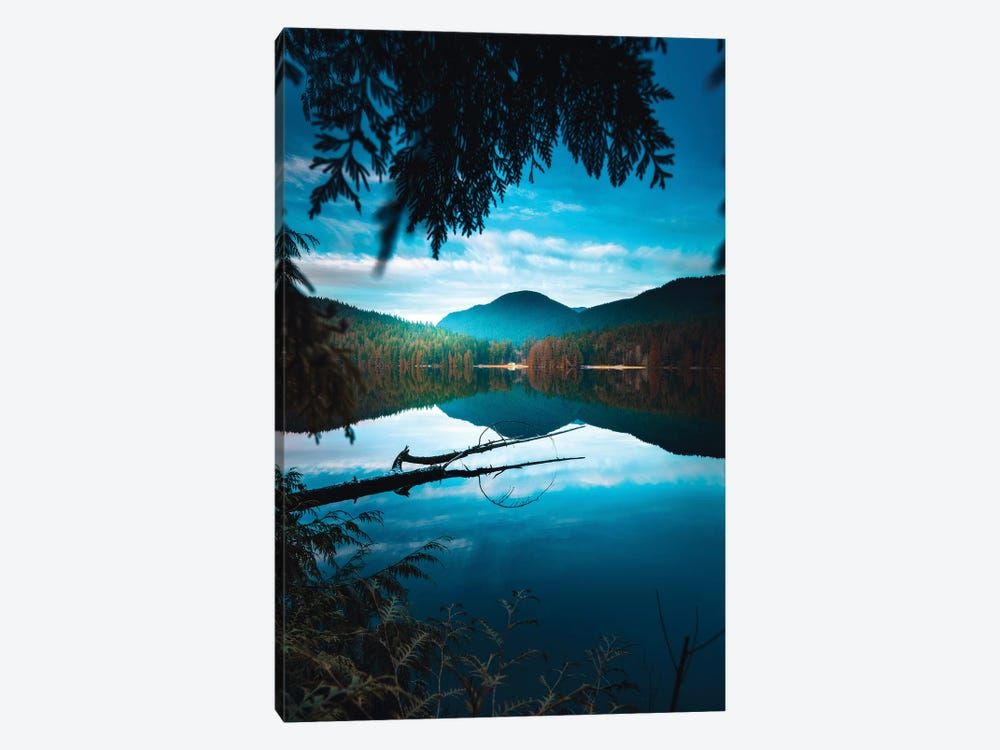Framed By Nature by Zach Doehler 1-piece Canvas Artwork